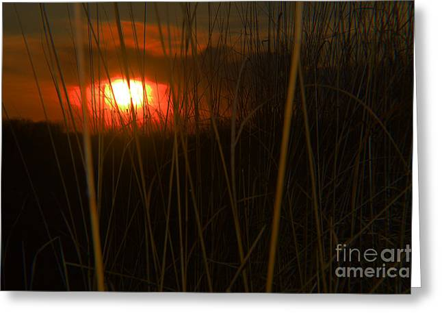 Moral Greeting Cards - A Red Lake Sundown Greeting Card by Tina M Wenger