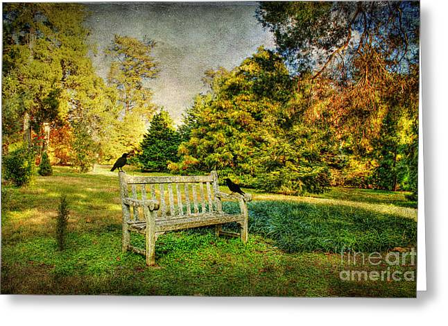 Empty Park Bench Greeting Cards - A Resting Place Greeting Card by Darren Fisher