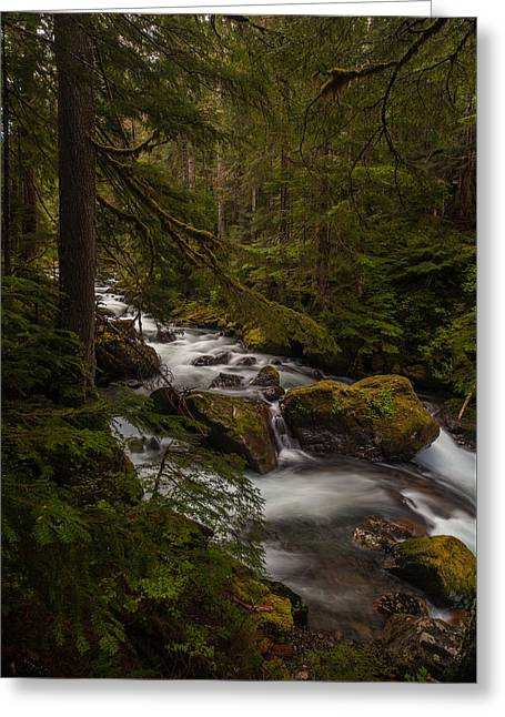 A River Passes Through Greeting Card by Mike Reid