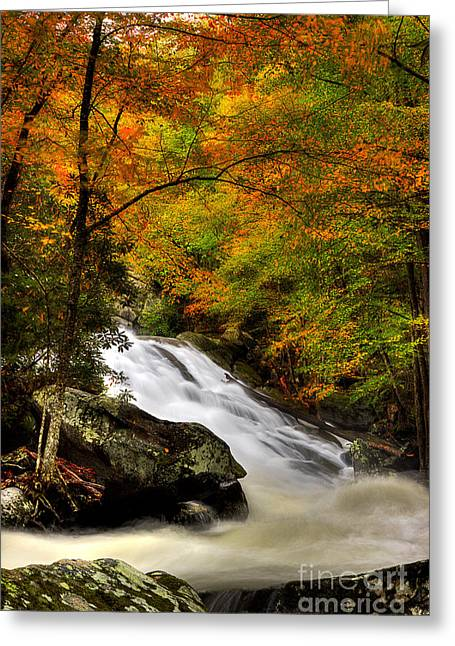 Flowing Stream Greeting Cards - A River Runs Through It Greeting Card by Michael Eingle