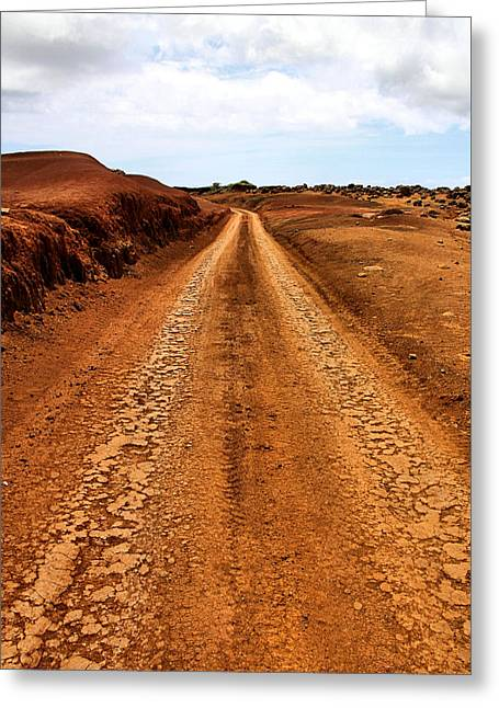 Paradise Road Greeting Cards - A Road Less Traveled Greeting Card by DJ Florek