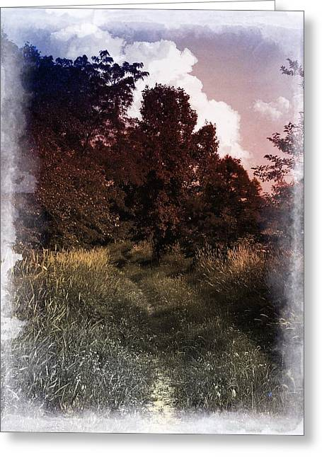 Rural Indiana Greeting Cards - A Road Less Traveled Greeting Card by Scott Kingery