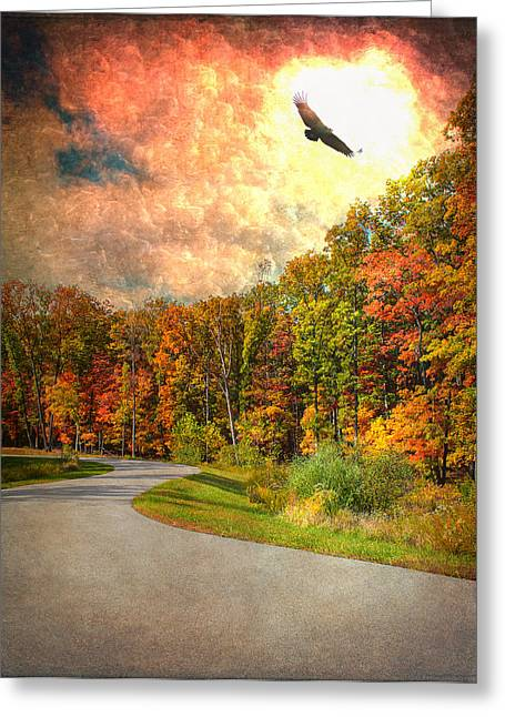 New Melle Greeting Cards - A Road Thru Nature Greeting Card by Bill Tiepelman