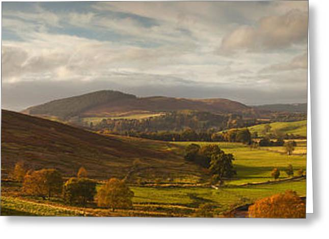 Roadway Greeting Cards - A Road Winding Through An Autumn Greeting Card by John Short