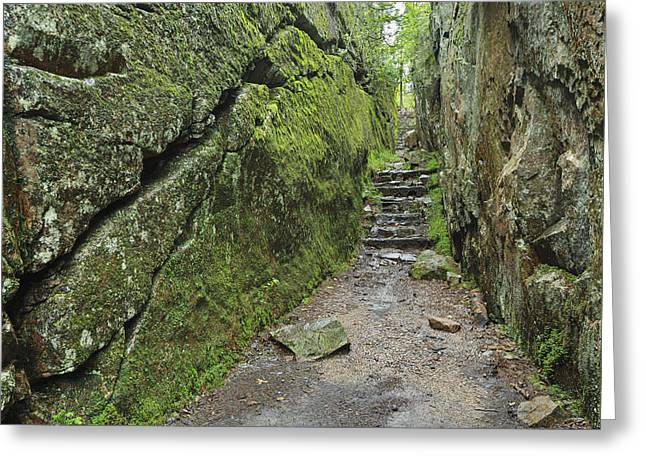 Cover The Face Greeting Cards - A Rock Face Trail Leading To Agawa Bay Greeting Card by Ken Gillespie