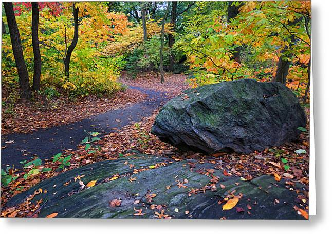 Newyorkcity Greeting Cards - A Rocky Autumn in the Ramble Greeting Card by Cornelis Verwaal