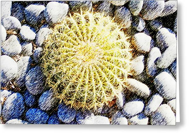 White River Scene Mixed Media Greeting Cards - A Rocky Life Greeting Card by Karyn Robinson