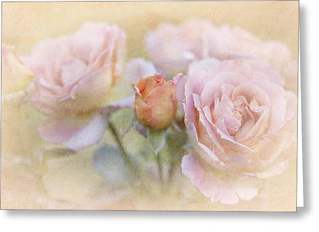 Theresa Leigh Photography Greeting Cards - A Rose By Any Other Name Greeting Card by Theresa Tahara