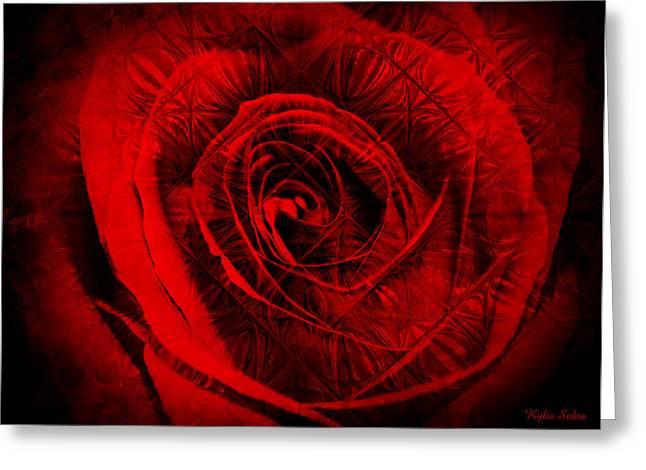Kylie Sabra Greeting Cards - A Rose Greeting Card by Kylie Sabra