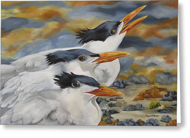 Tern Paintings Greeting Cards - A Royal Trio Greeting Card by Phyllis Beiser
