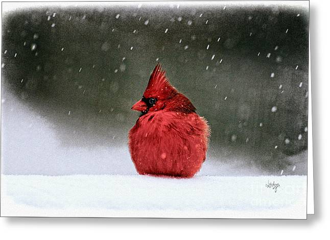 A Ruby In The Snow Greeting Card by Lois Bryan