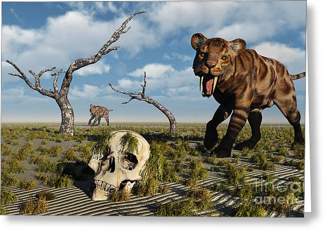 The Tiger Greeting Cards - A Sabre Tooth Tiger Discovers Greeting Card by Mark Stevenson