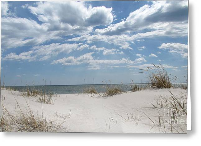 Fire Island Greeting Cards - Great South Bay Greeting Card by Maude Renganeschi