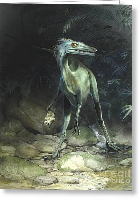 Stream Digital Art Greeting Cards - A Saurornithoides Troodontid Holding Greeting Card by Jan Sovak
