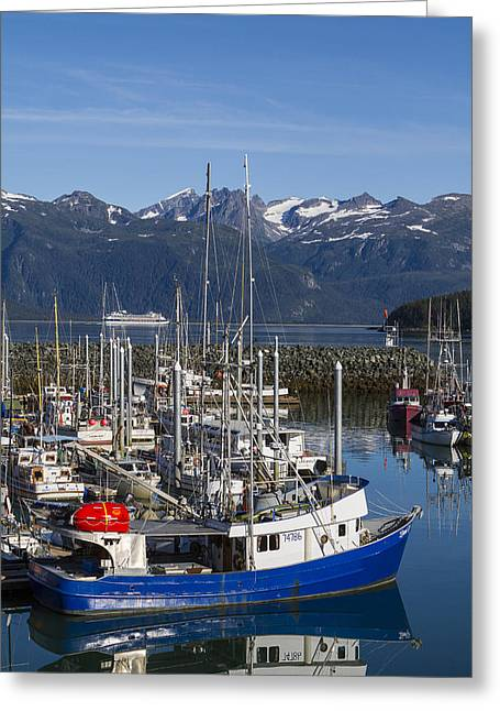 Prints Of Alaska Greeting Cards - A Scenic Harbor Greeting Card by Tim Grams