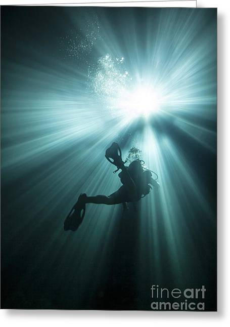 Devils Den Greeting Cards - A Scuba Diver Ascends Into The Light Greeting Card by Michael Wood
