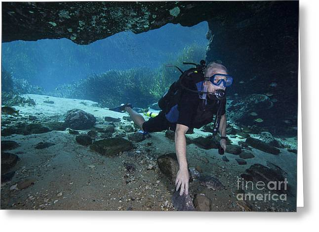 Scuba Diving Greeting Cards - A Scuba Diver Explores The Blue Springs Greeting Card by Michael Wood