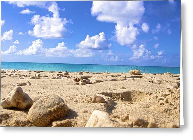 Vaction Greeting Cards - A seashells view in Anguilla Greeting Card by Jennifer Lamanca Kaufman