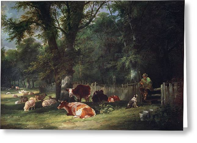 Shepherds Greeting Cards - A Shady Corner Greeting Card by William Snr. Shayer