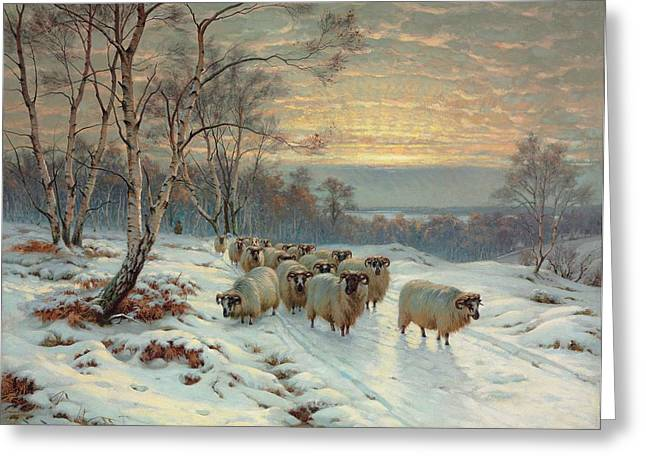 Sunset; Evening; Winter; Snow; Sheep Greeting Cards - A shepherd with his flock in a winter landscape Greeting Card by Wright Baker