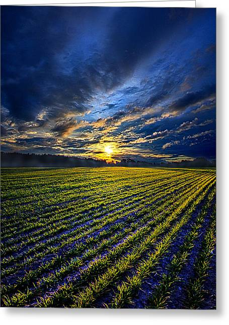 Shadows Greeting Cards - A Short Piece Of Time Greeting Card by Phil Koch