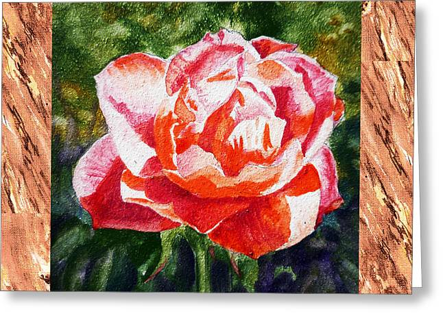 Gentle Petals Greeting Cards - A Single Rose The Morning Beauty Greeting Card by Irina Sztukowski