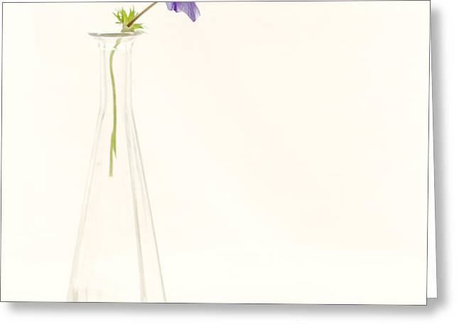 A single thought Greeting Card by Constance Fein Harding