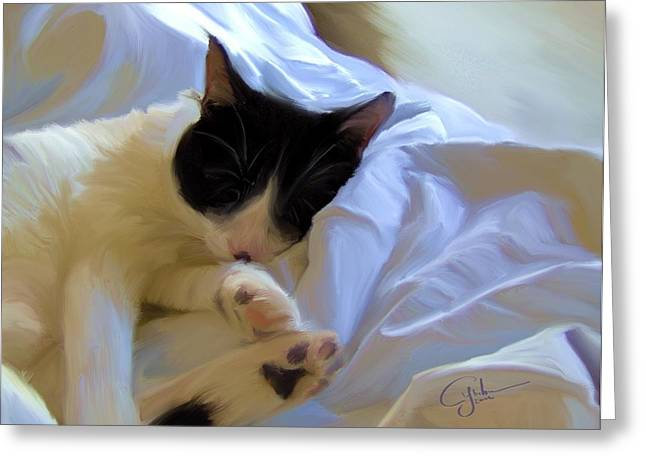 White Cloth Greeting Cards - A Sleeping Bean Hawaiian Cat Nap Greeting Card by Cymber Lily Quinn