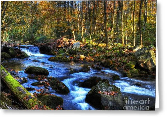 Smoky Greeting Cards - A Smoky Mountain Autumn Greeting Card by Mel Steinhauer