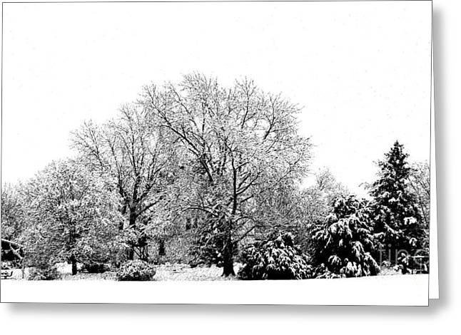 Snowy Day Greeting Cards - A Snowy Day in December Greeting Card by Luther   Fine Art