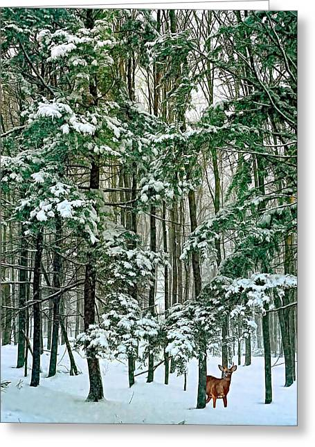 Storm Prints Greeting Cards - A Snowy Day Greeting Card by Steve Harrington
