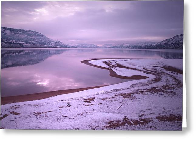 Cold Morning Sun Greeting Cards - A Snowy Shore Greeting Card by Tara Turner