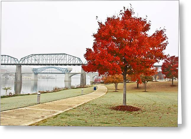 Riverwalk Greeting Cards - A Soft Autumn Day Greeting Card by Tom and Pat Cory