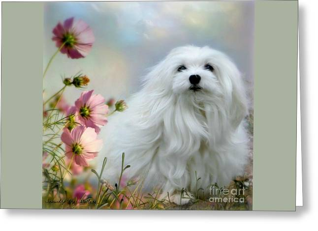 A Soft Summer Breeze Greeting Card by Morag Bates