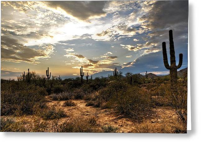 A Sonoran Desert Sunset  Greeting Card by Saija  Lehtonen