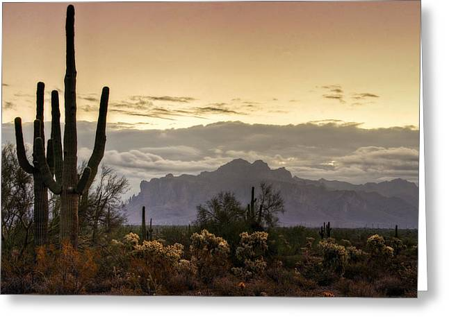 The Superstitions Greeting Cards - A Sonoran Morning  Greeting Card by Saija  Lehtonen