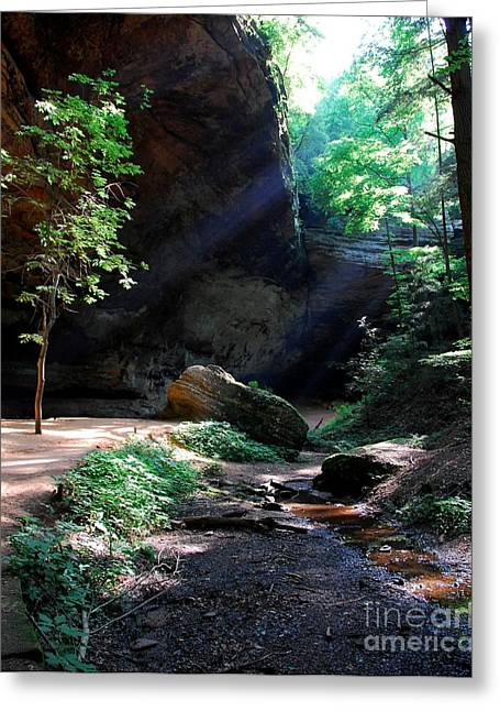 Shades State Park Greeting Cards - A Special Light Greeting Card by Mel Steinhauer