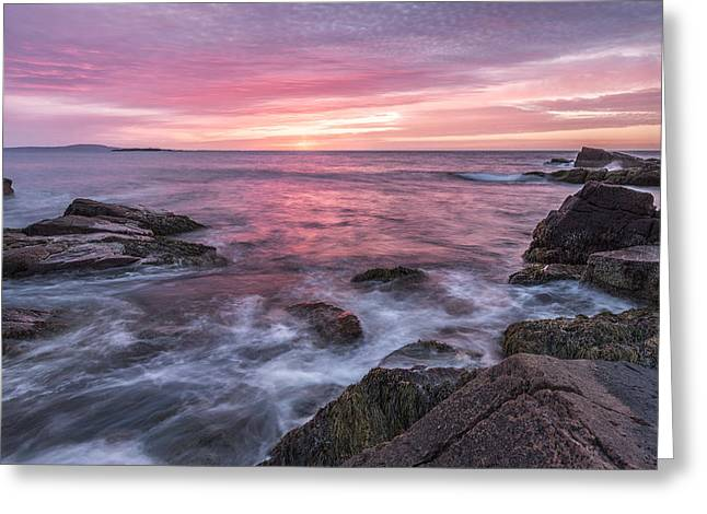 Acadia National Park Photographs Greeting Cards - A Splash of Orange Greeting Card by Jon Glaser