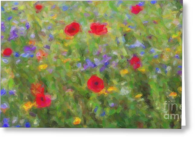 A Splash Of Summer Colour Greeting Card by Tim Gainey