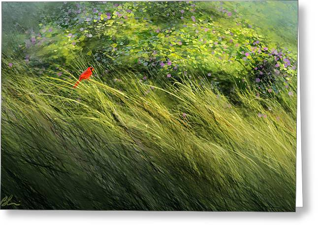 Songbird Greeting Cards - A Spot of Red Greeting Card by Aaron Blaise
