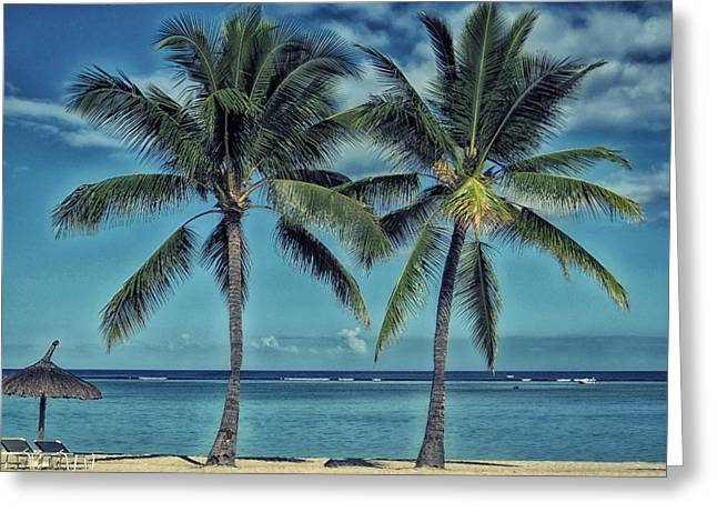 Chaise-lounge Greeting Cards - A Spot on the Beach Greeting Card by Mountain Dreams