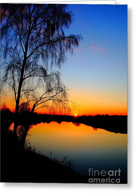 Sunset Reflecting In Water Greeting Cards - A Spring Evening Greeting Card by Paul Bettison