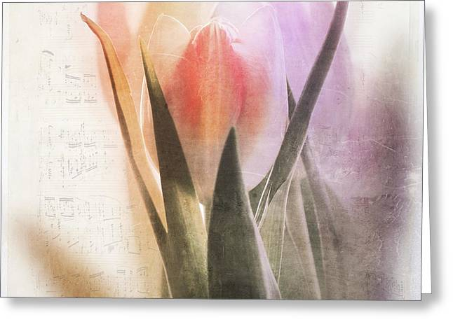 A Spring Song Greeting Card by Heike Hultsch