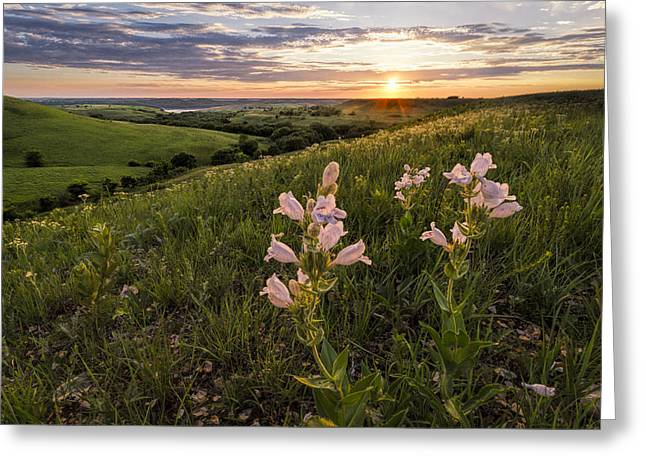 A Spring Sunset In The Flint Hills Greeting Card by Scott Bean