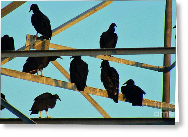 Humorous Greeting Cards Greeting Cards - A Stink Of Buzzards Greeting Card by Joe Jake Pratt