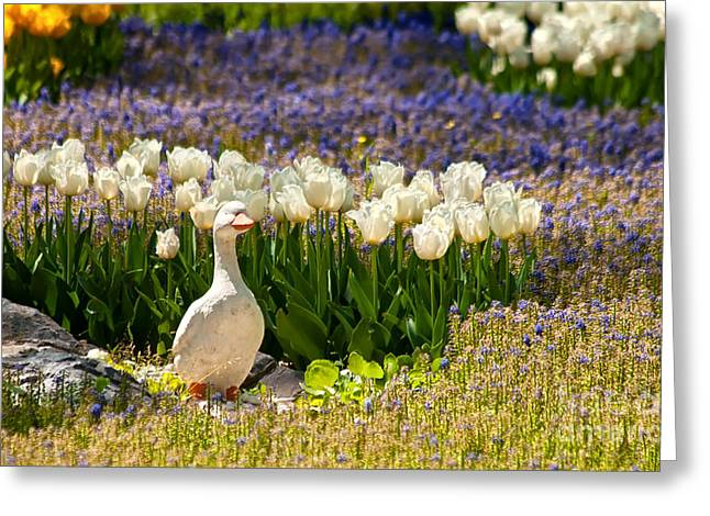 Garden Statuary Greeting Cards - A Stone Duck Statue  Greeting Card by Leyla Ismet