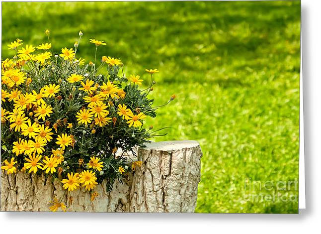 Garden Statuary Greeting Cards - A Stone Tree Trunk Statue in a Yard Setting With Yellow Daisies Greeting Card by Leyla Ismet