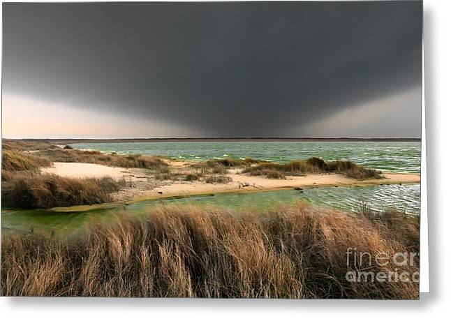 Sea Oats Greeting Cards - A Storm a Coming - Outer Banks I Greeting Card by Dan Carmichael
