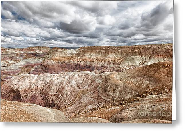 Petrified Forest Arizona Greeting Cards - A Storm Is Brewing Greeting Card by Sandra Bronstein