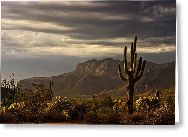 The Superstitions Greeting Cards - A Stormy Evening in the Superstitions  Greeting Card by Saija  Lehtonen